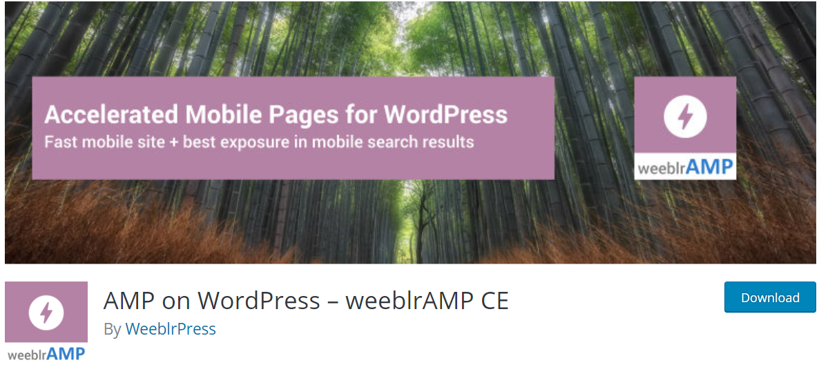 wordpress seo plugins 2019 - AMP on WordPress