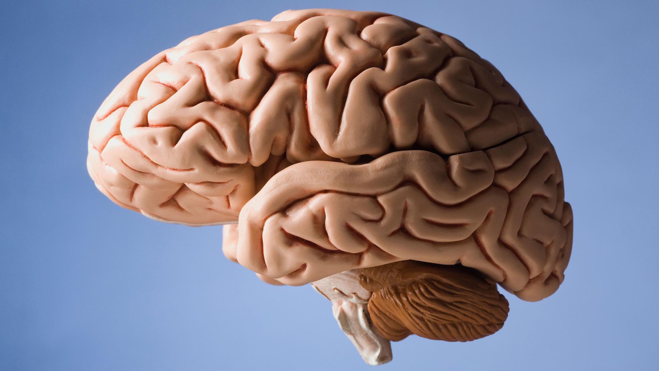 Слова из машины: преобразование нейронной активности пациента с анартрией в текст