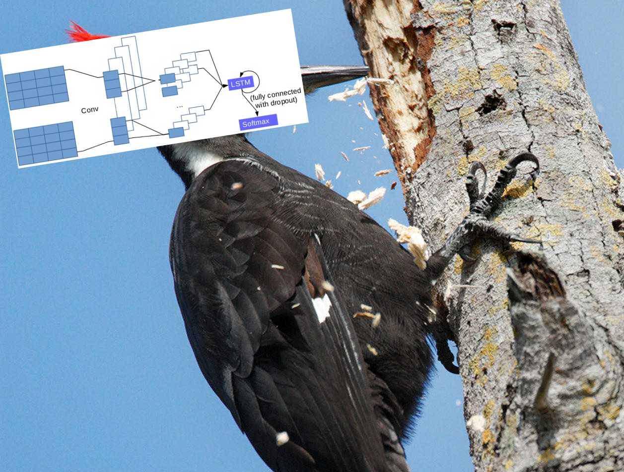 Как мозг бьет дерево, или как мы сделали рекомендательную систему с помощью нейронной сети