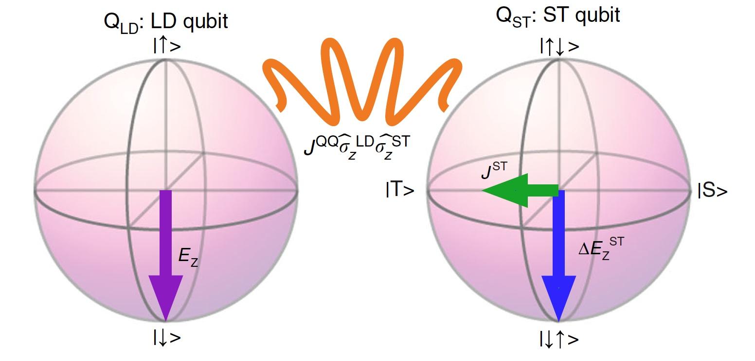 Быстрее и точнее: гибридная система разнотипных кубитов