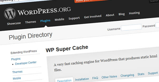 Like Yandex.Den, the caching plugin for WordPress and hosting increased my pressure