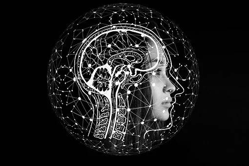 Разработка и мышление как работает мозг во время кодинга