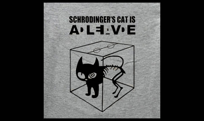 Quantum switch in the Schrödinger style