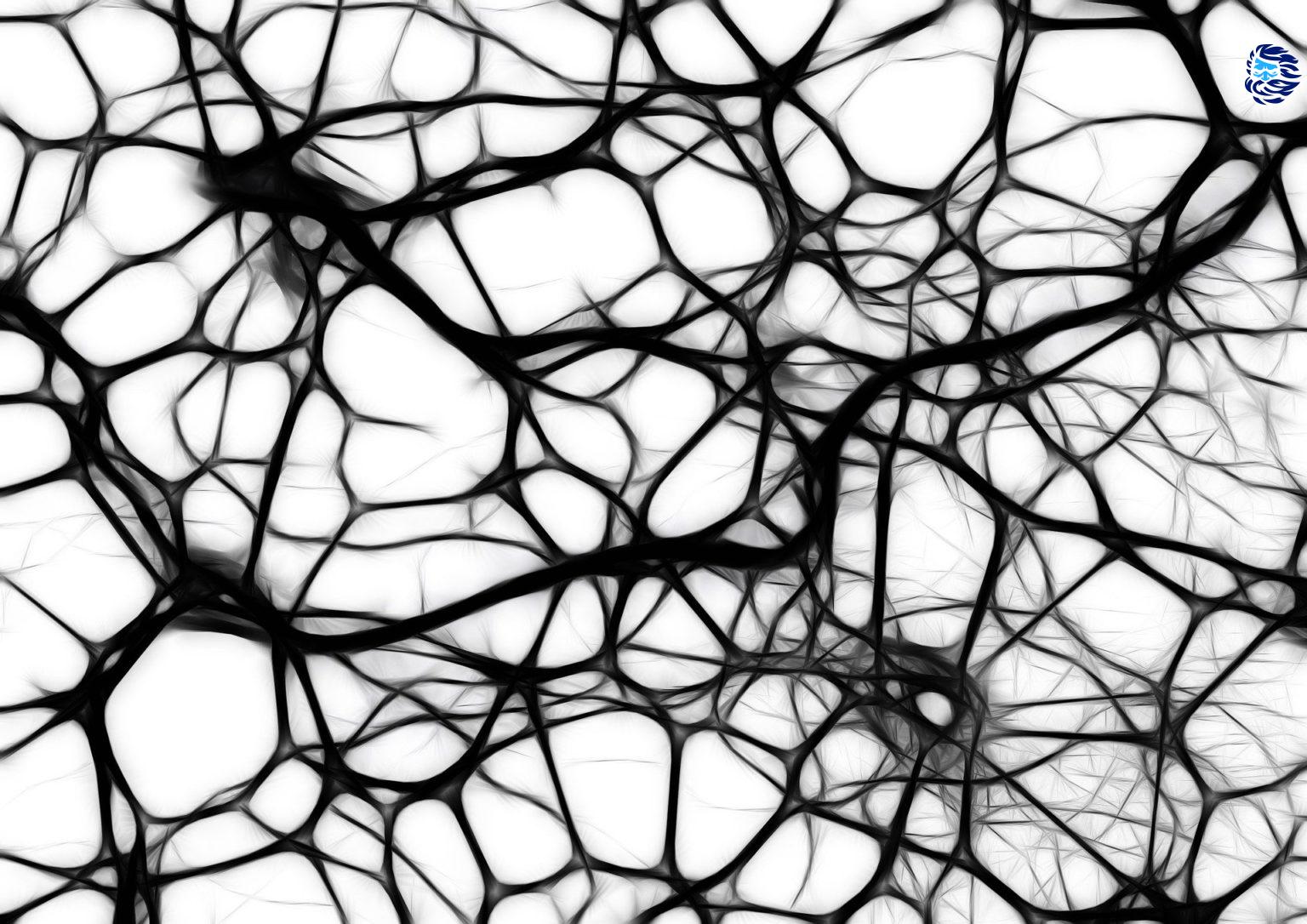 Перевод Альтернатива ML-Agents интегрируем нейросети в Unity-проект с помощью PyTorch C API