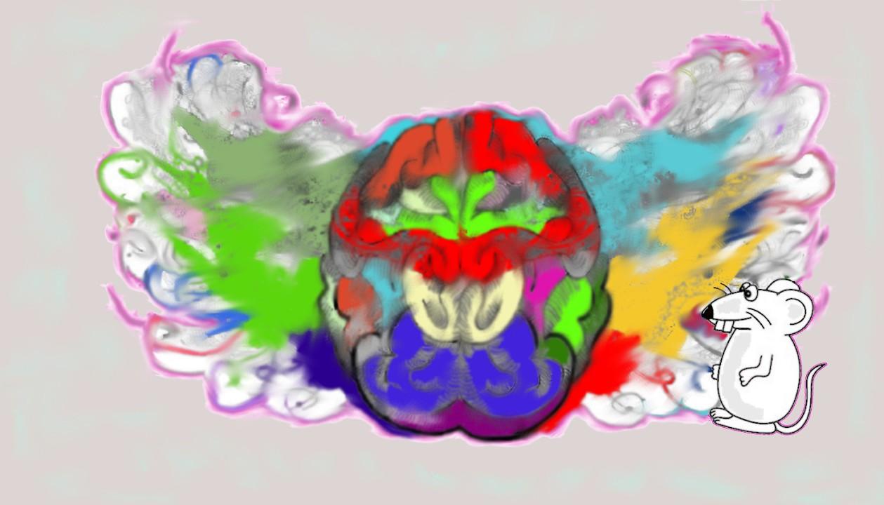 В поисках драгоценностей на другом конце Brainbow