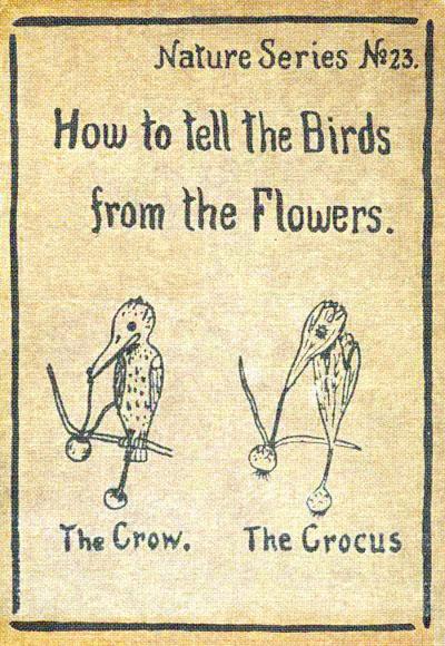 Как отличать птиц от цветов. Или цветы от птиц