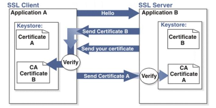 Настройка двусторонней RSA и GOST аутентификации в