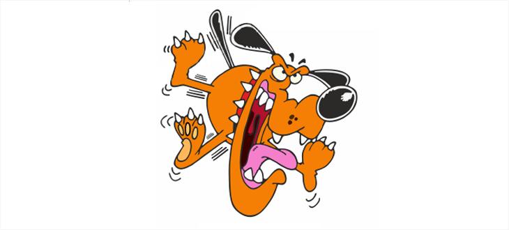 Осторожно! Злая собака! Или как укротить форму регистрации