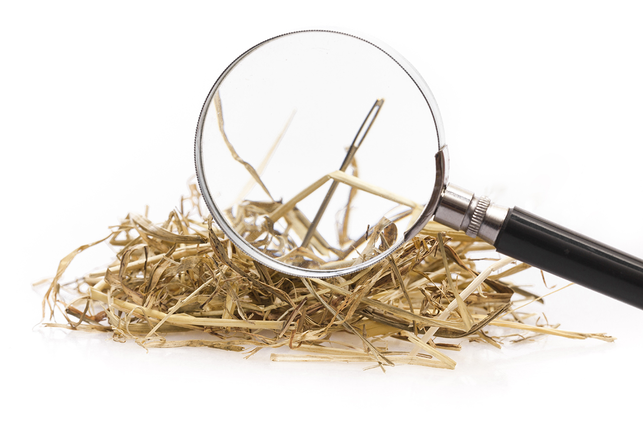 «В активном поиске»: как мы выбирали поисковый механизм для DLP-системы