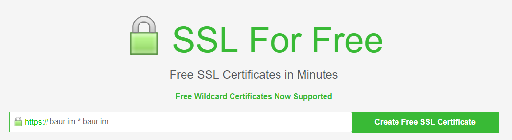 Let's Encrypt began issuing wildcard certificates