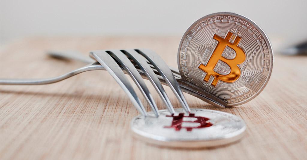 [Перевод] Еще 50 форков Bitcoin в 2018 году. Безумие или обоснованный тренд