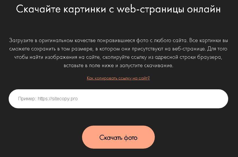 600f1d949a11b651022967.jpeg