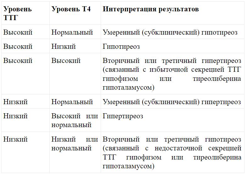 Транспортер т4 ттг подвесные конвейеры их назначение