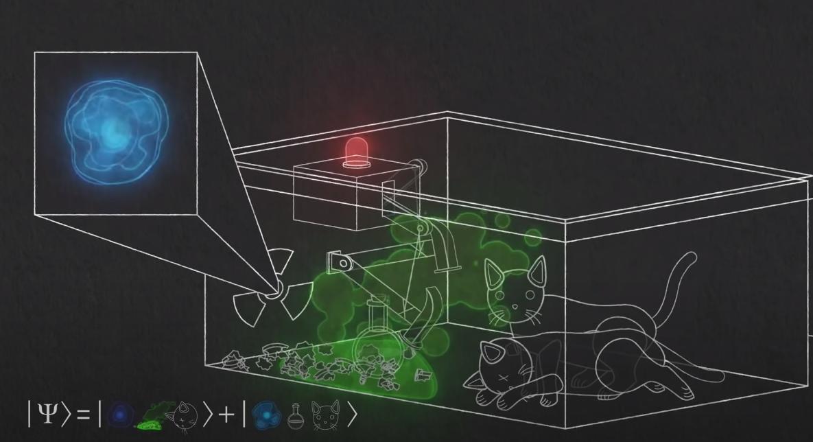 изображение системы внутри коробки с двумя состояниями, мертвым котом и живым