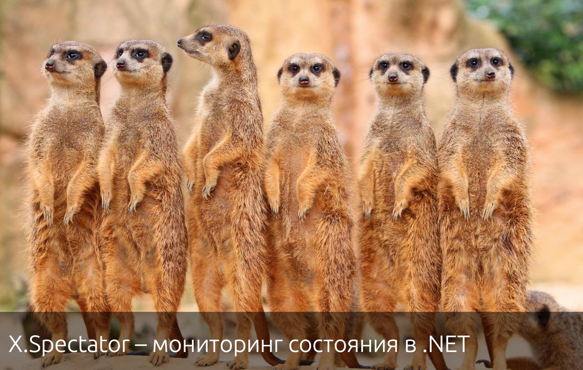 X.Spectator – мониторинг состояния в .NET