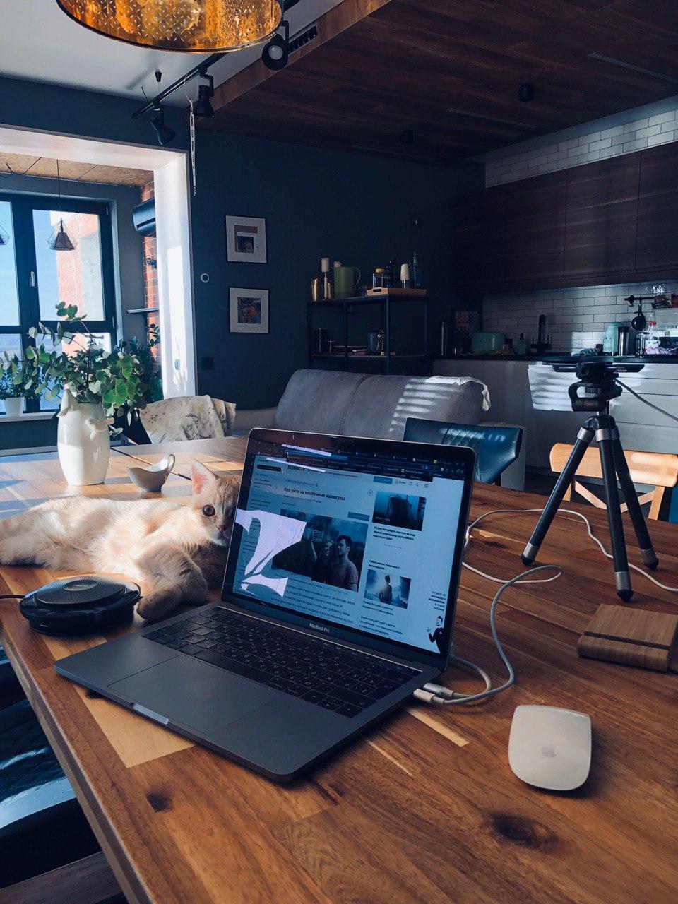 Собрал на Jabra Panacast комбайн для видеоконференций, плюс и минусы для офиса и дома — IT-МИР. ПОМОЩЬ В IT-МИРЕ 2020