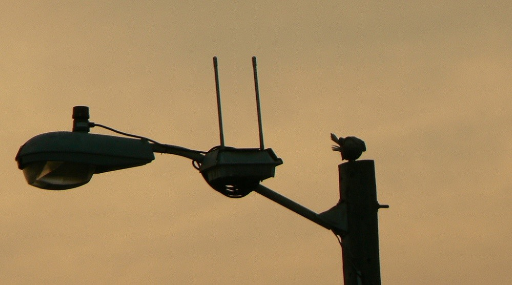 """""""Expanding Borders"""": the 6 GHz band will be supplied to Wi-Fi"""