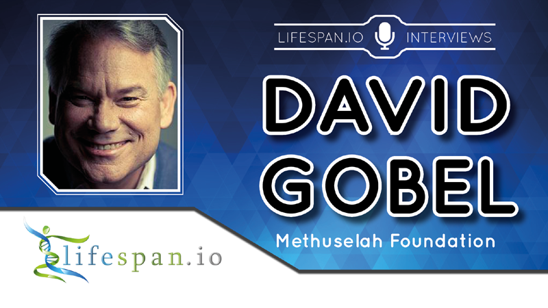 Interview with David Gobel