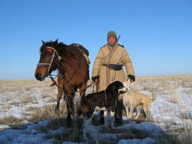 Казахская лошадь из Википедии