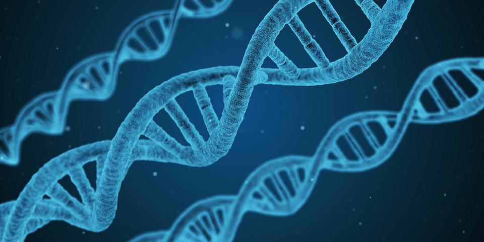 [Перевод] Новое интервью с Гари Хадсоном: разработка технологий для борьбы со старением, раком и иными заболеваниями