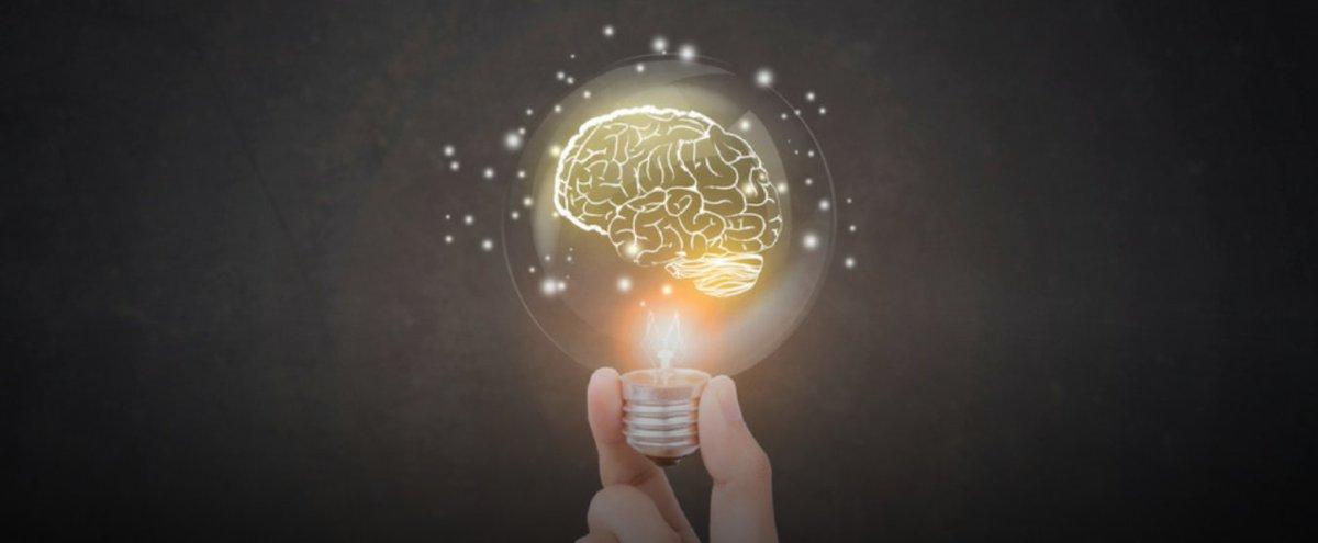 Сети, формирующие интеллект