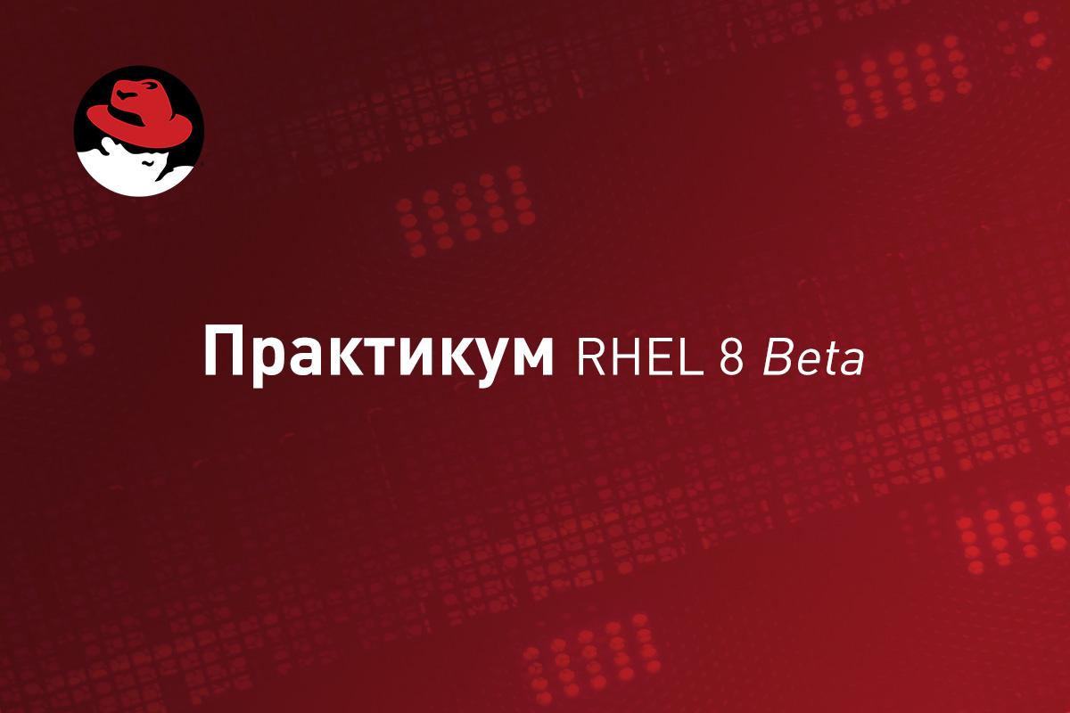 Практикум RHEL 8 Beta: Устанавливаем Microsoft SQL Server