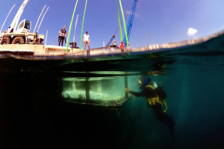 [Перевод] В заливе возле Монако установили 3D-печатные коралловые рифы