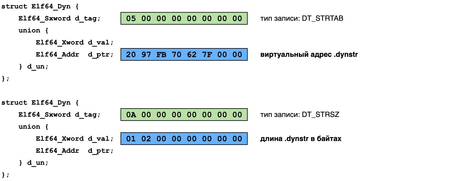 теги секции DYNAMIC