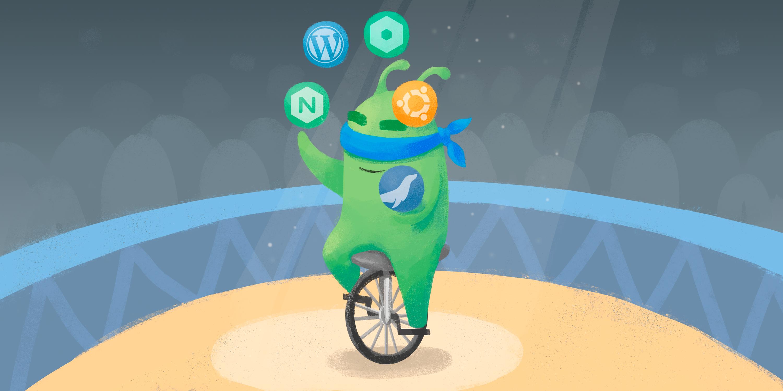 Перевод Автоматизируем установку WordPress с NGINX Unit и Ubuntu