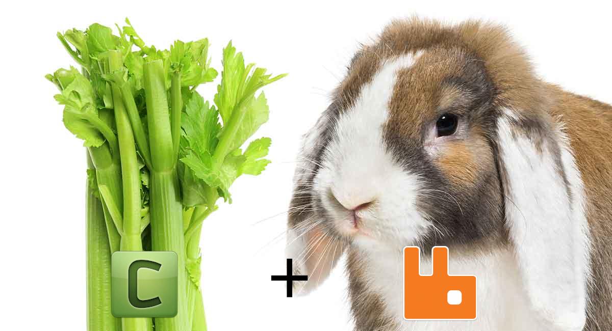 Celery+RabbitMQ