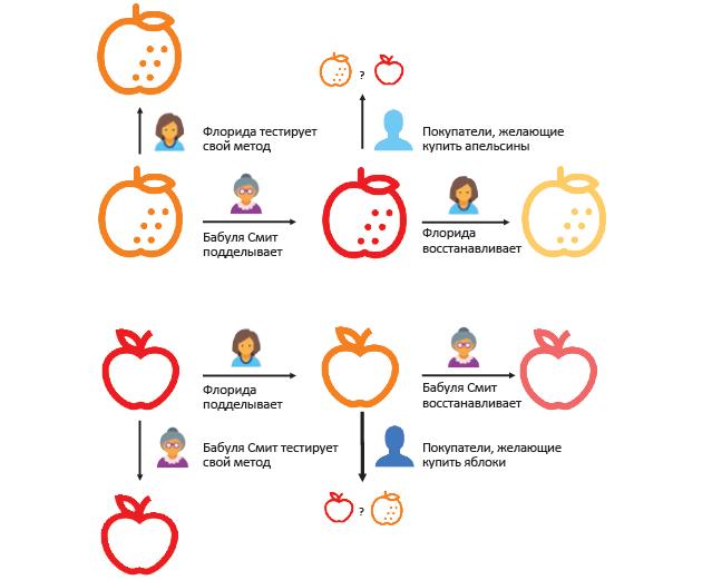 Схема подделки, восстановления и проверки фруктов в овощном магазине. Отрывок из книги