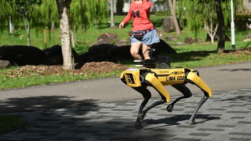 Роботы-начальники: семь примеров, как люди и бизнесы переходят под власть машин
