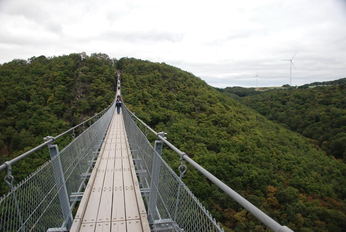Мерсдорф, крупнейший подвесной мост