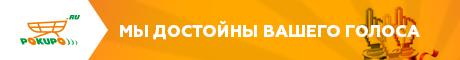 Pokupo и Рейтинг Рунета