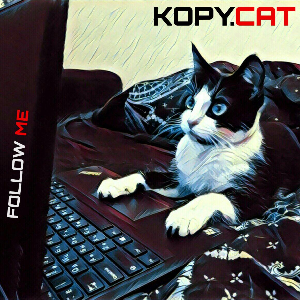 Носорог внутри кота — запускаем прошивку в эмуляторе Kopycat