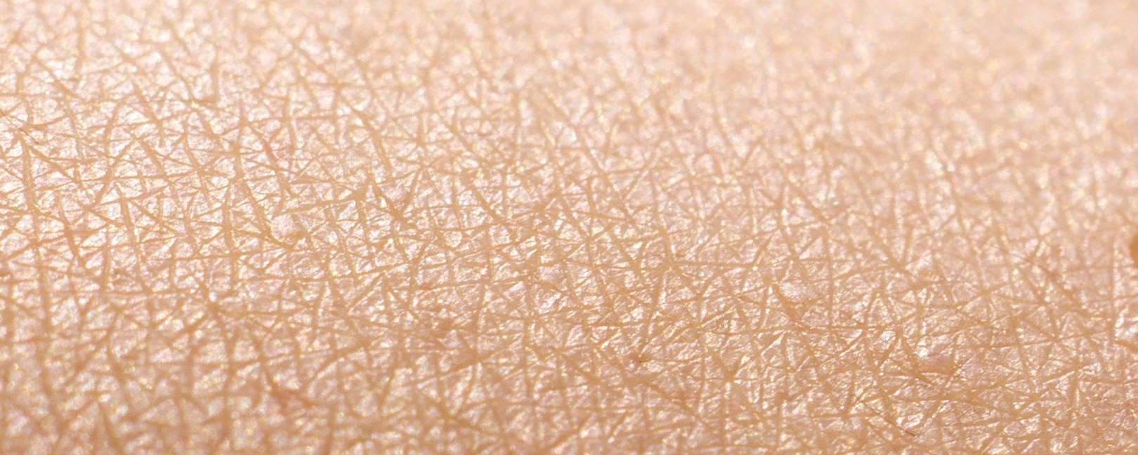 Математика кожи: выращивание эпидермиса на основе математического моделирования