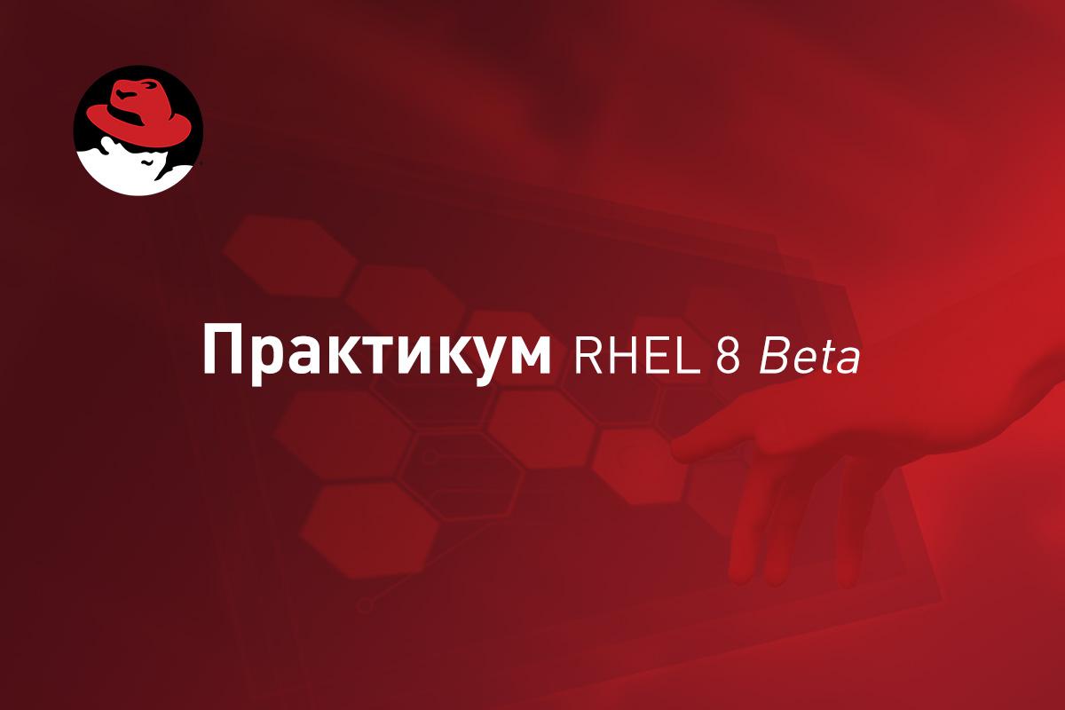 Практикум RHEL 8 Beta: Собираем работающие веб-приложения