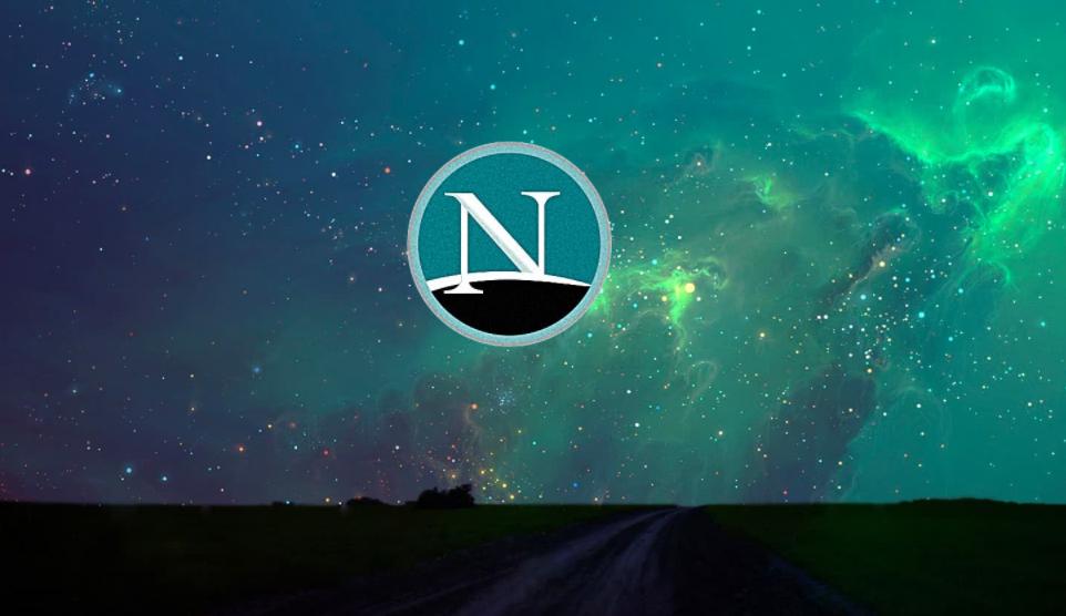 NETSCAPE Хроника взлетов и падений