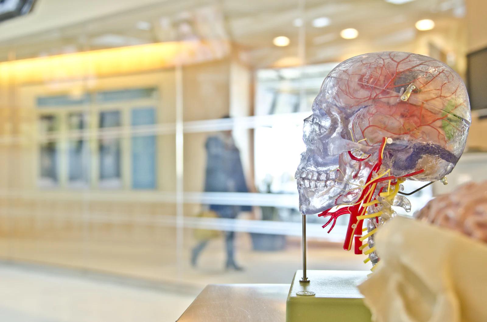 Управление силой мысли человеческий мозг подключат к ПК через вены