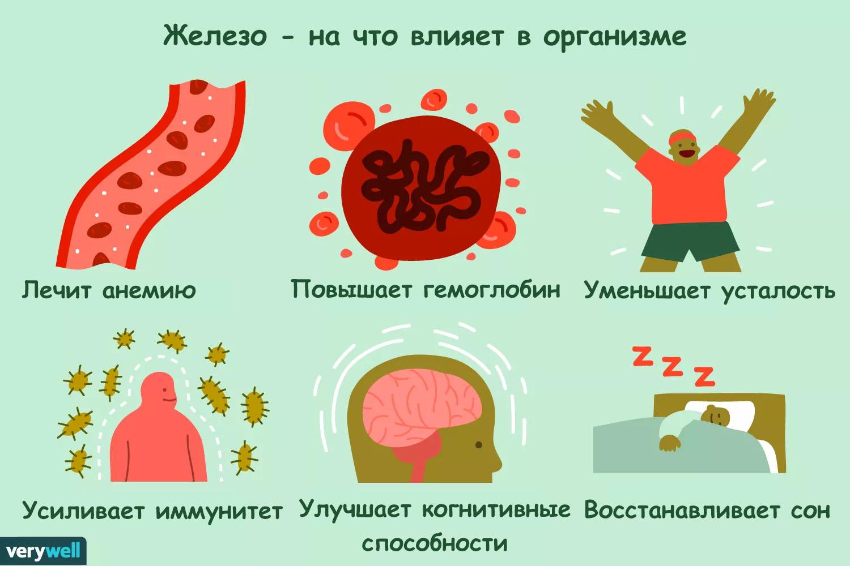 Анализ крови железо понижено что это значит