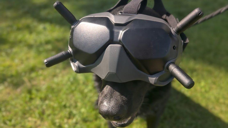 Зачем нужна защита винтов квадрокоптера, какую выбрать?