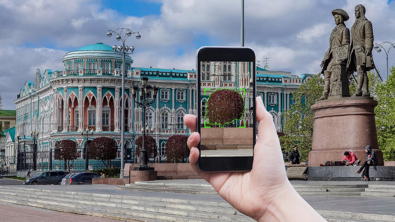 Как машинное обучение спасает деревья в Екатеринбурге