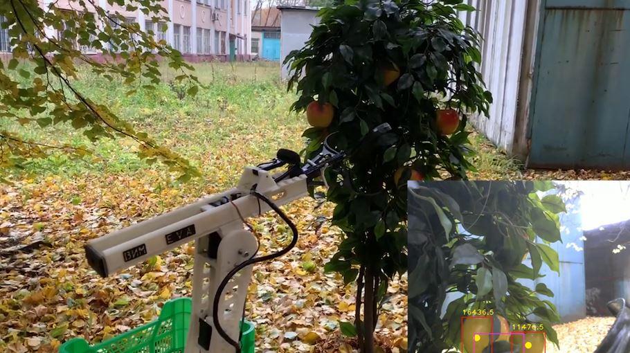 Финансовый университет и ФНАЦ ВИМ создали умного робота для сбора яблок на базе ИИ Microsoft