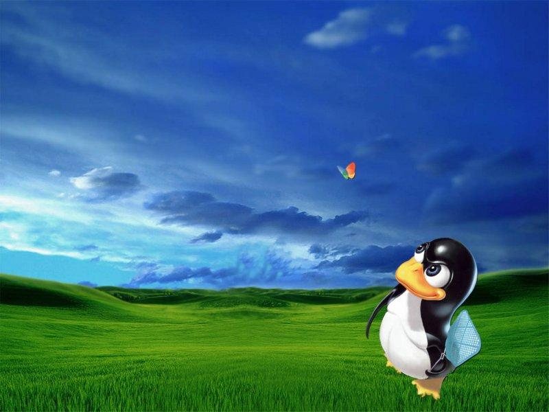 Рассказ о том, как Linux привели в Windows