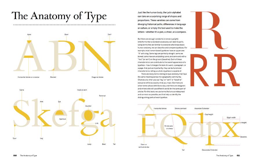 Анатомия тысячи шрифтов