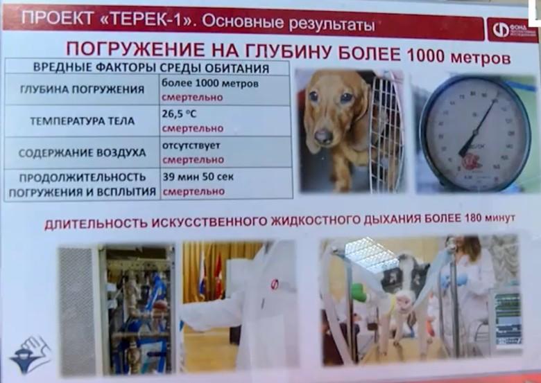 Андрей Филиппенко из РАЕН изобрёл технологию дыхания в жидкости из фторуглерода