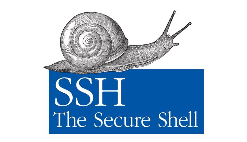 Algorithm operation protocol ssh