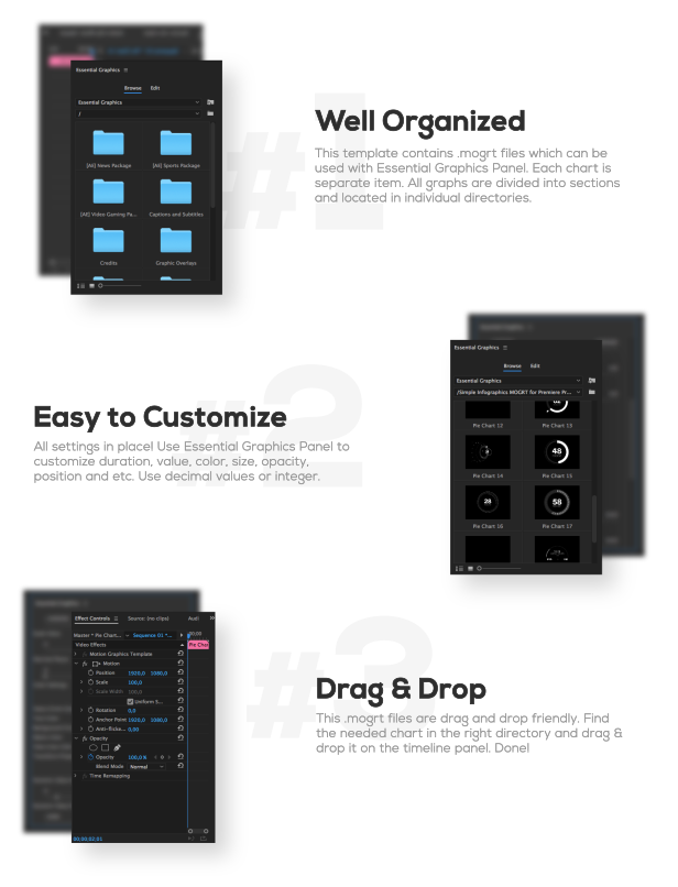 Simple Infographics I MOGRT for Premiere Pro - 2