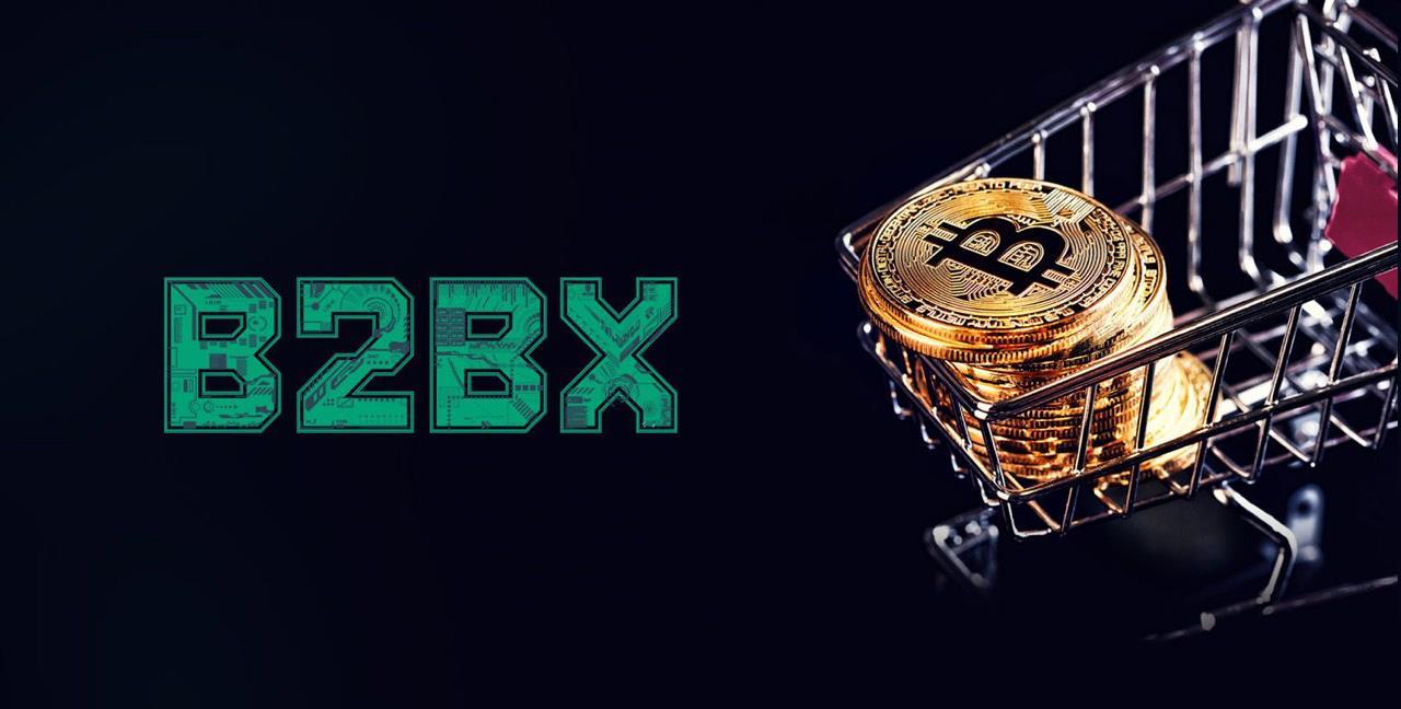 B2BX: экономика ICO и основные направления расходования средств инвесторов B2BX
