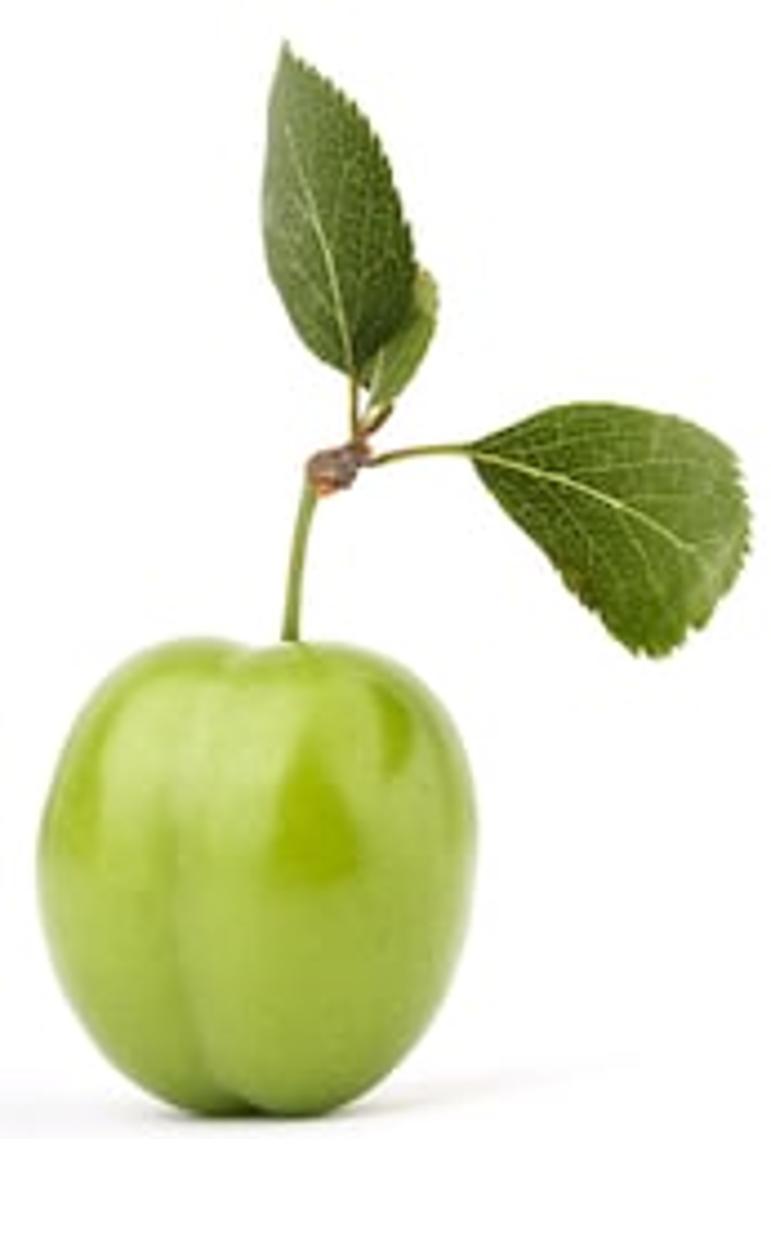 Greenplum 6: обзор новых фич